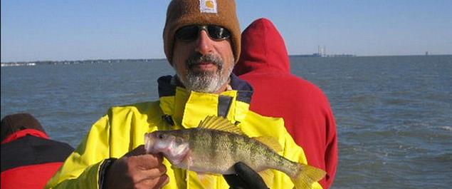 Lake Erie Walleye And Perch Fishing Charter Near Monroe