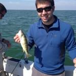 Lake Erie perch fishing aboard the Stray Cat Monroe MI