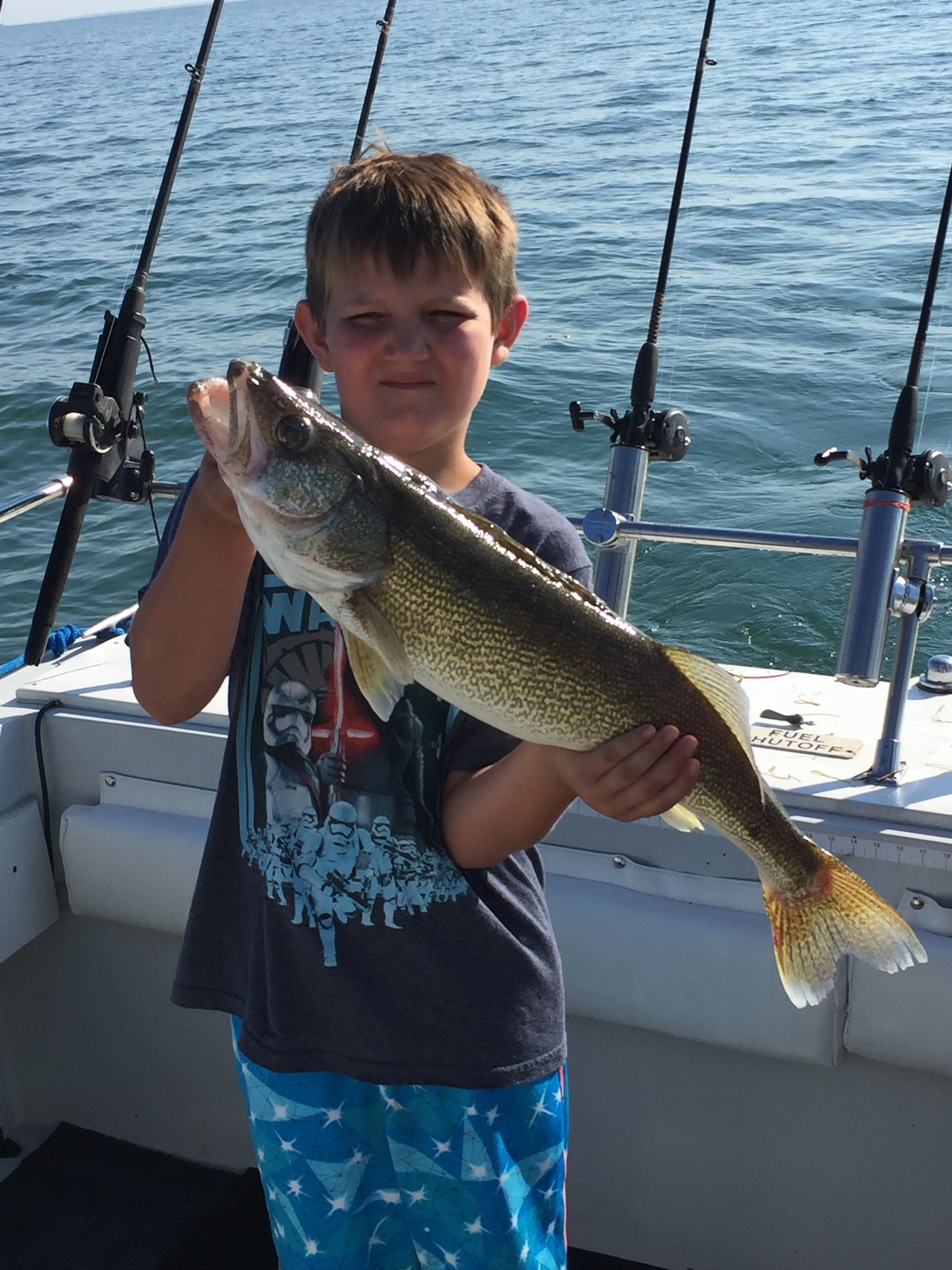 Ohio sea grant stray cat fishing charters lake erie for Lake erie fish species