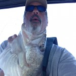 Lake Erie walleye fishing charter trip near Monroe Michigan