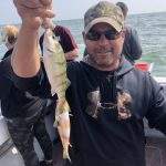 Perch fishing charter Lake Erie Stray Cat Fishing Charter MI